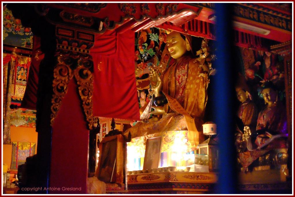 buddha-here