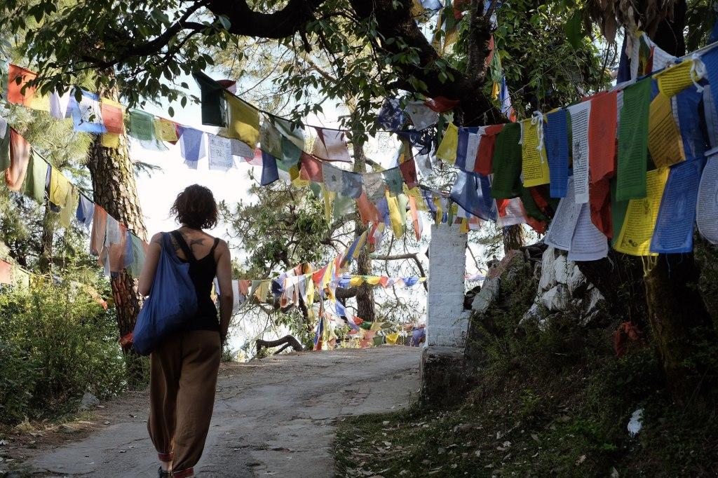 Dharamsala-garden